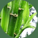 Ocet bambusowy